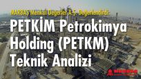Petkim'in (PETKM) teknik analizi